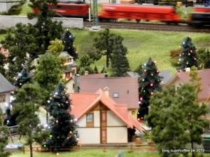 05_Weihnachtsbäume_MiWuLa