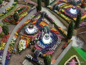 Blumenpracht im IGS Garten dank vieler freiwiller Helfer aus dem Forum.