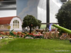 Regenfreie Zone. Der 81te IGS-Garten ist auf jeden Fall einen Besuch wert.