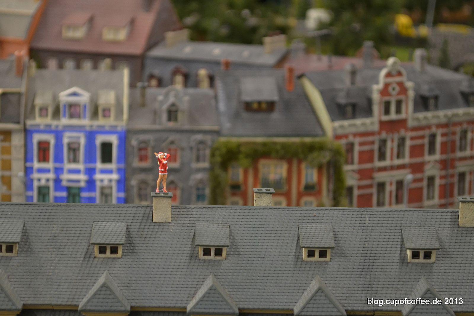 Auf den Dächern ist sie zu Hause.