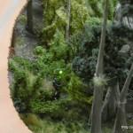 11_Swamp_Ting_Minitur_Wunderland