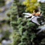 12_Drache_Miniatur_Wunderland