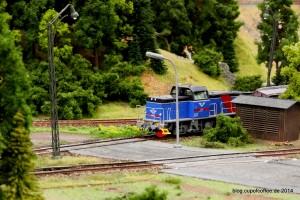 Ja, es gibt auch Züge im MiWuLa...