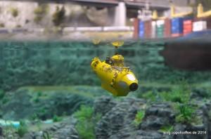 Yellow Submarine...