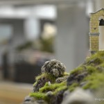 16_Glockentürmchen_Miniatur_Wunderland_Italien