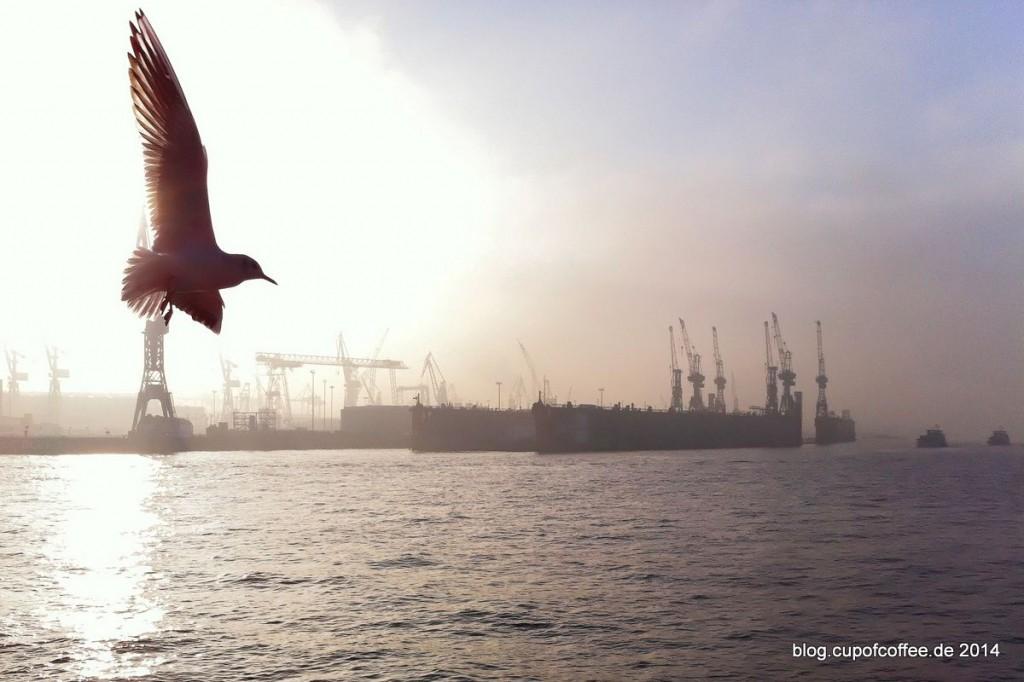 08_Nebel_Hamburg_Elbe_Landungsbrücken