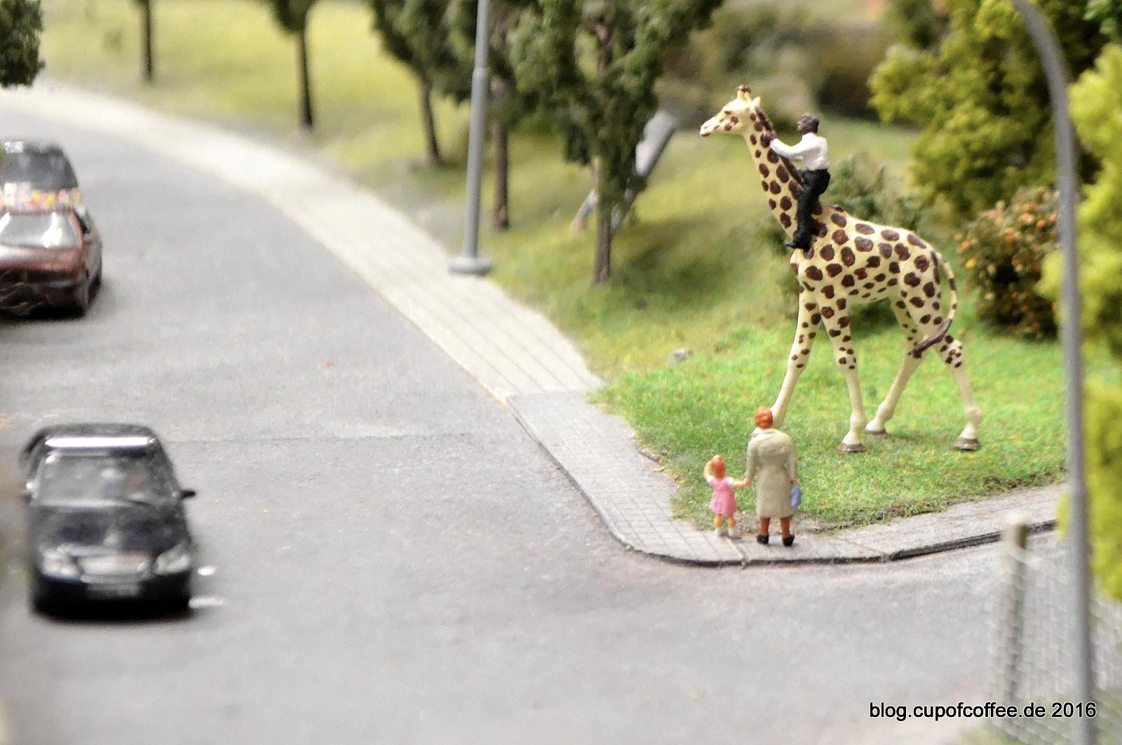 Überall im Wunderland ist tierisch was los. Man muss nur genau hin gucken.
