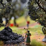 miniatur-wunderland-bella-italia-272-toskana-olivenernte-mai-2016