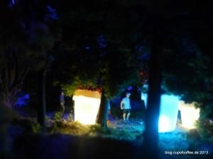28_MiWuLa_IGS_Gartenschau_nachts_im_Wald