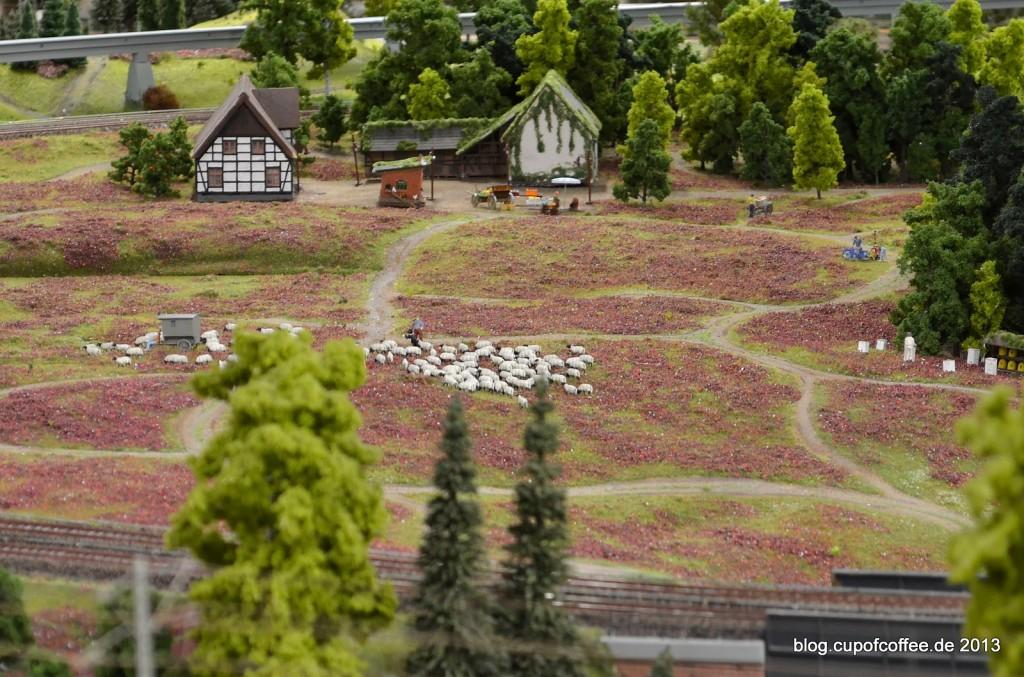 Lüneburger Heide im Miniatur Wunderland