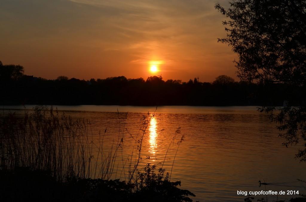Außenalster_Hamburg_Sunset