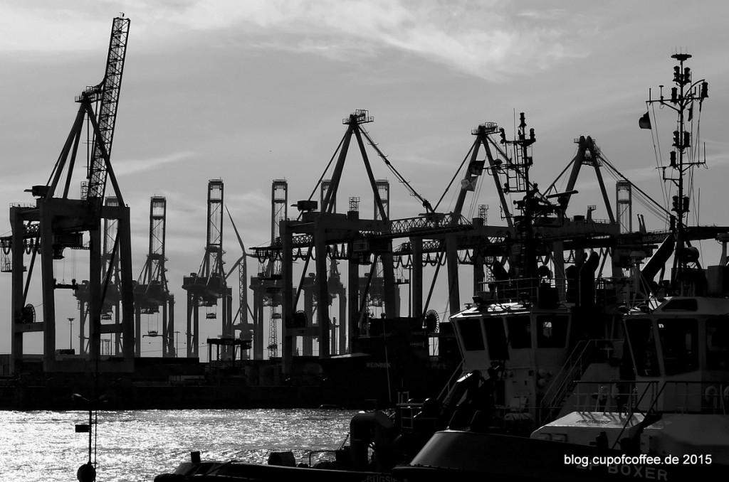 Containerhafen_Burchardkai_Elbe_Hamburg