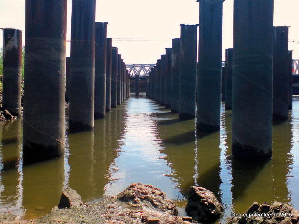 Pfähle Magdeburger Hafen Hamburg Hafencity 2009 01