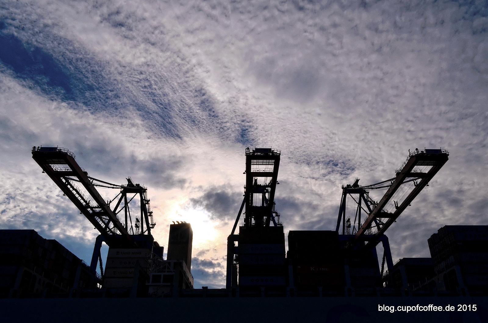 Containerbrücken Tollerort