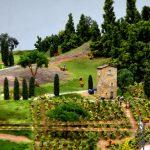 miniatur-wunderland-bella-italia-268-toskana-weinreben-mai-2016