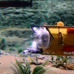 Yellow Submarine im MiWuLa
