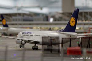 B737 Lufthansa